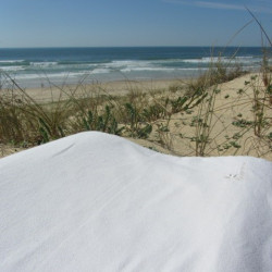 Taie pour l'oreiller ergonomique Wave Contour - Colori Blanc